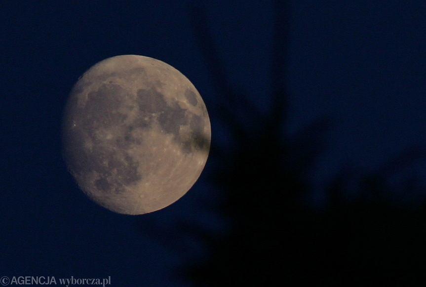 Pełnia księżyca w marcu to Pełnia Robaczego Księżyca