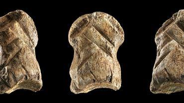Kolejny dowód na zmyślność neandertalczyków. Dzieło sztuki sprzed 51 tys. lat
