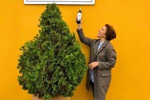 Jak rozpoznać dobrą oliwę? Radzi pierwsza w Polsce sommelierka oliwna