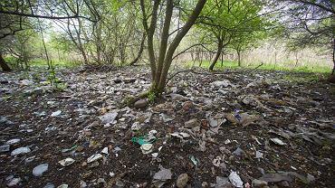 Rezerwat przyrody 'Torfowisko Rąbień'  jest potwornie zaśmiecone.