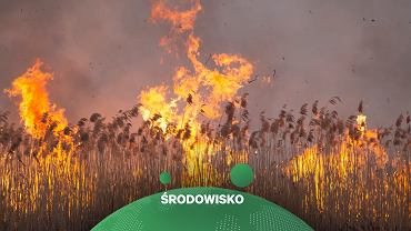 Komisja Europejska przestrzega przed pożarami w tym roku