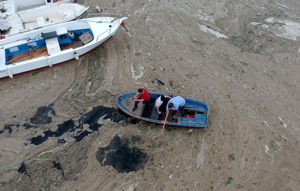 Morze Marmara pokryła gruba warstwa tzw. śluzu morskiego