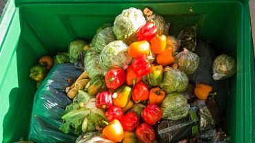 Rząd w walce z marnotrawstwem jedzenia. Sklepy będą oddawały nieużyte produkty potrzebującym.