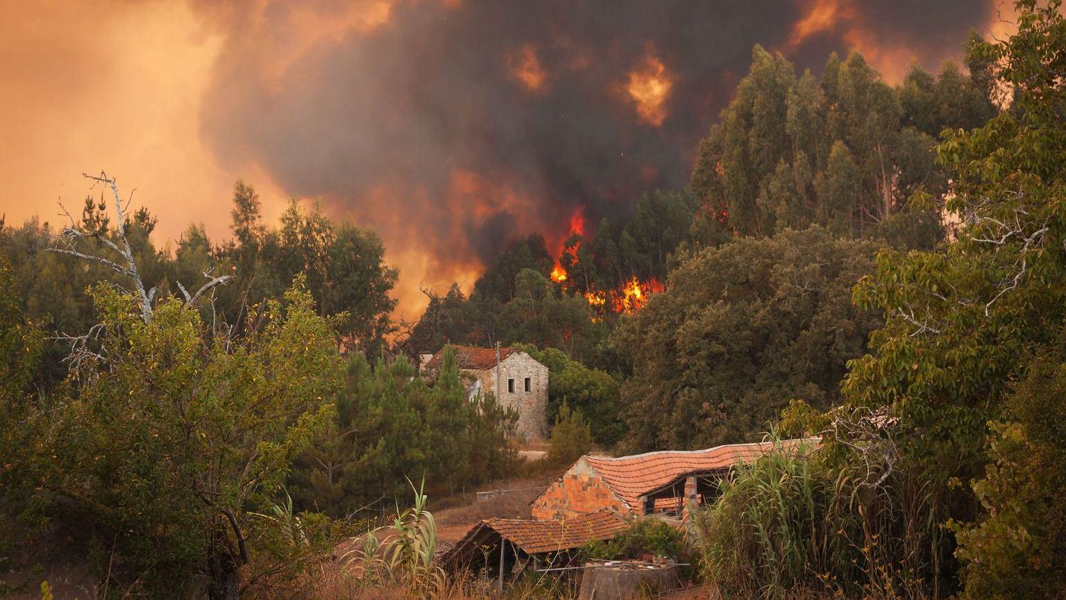 W wyniku pożarów w Portugalii w 2017 roku zginęły 64 osoby, a 204 zostały ranne