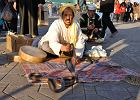Maroko wycieczki