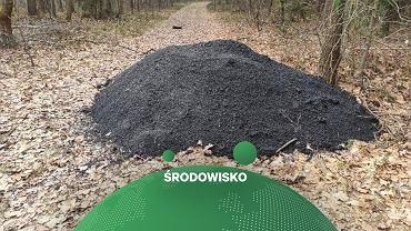 W lesie wylano asfalt. 'Kończy nam się katalog śmieci, których jeszcze nie widzieliśmy'
