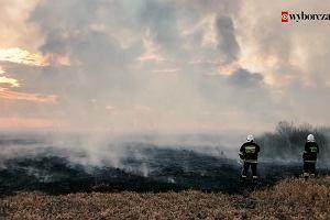 Biebrzański Park Narodowy w ogniu. Pali się jeden ze światowych cudów natury