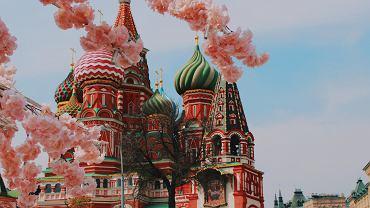 Netflix rozpoczyna współpracę z rosyjskimi producentami. Na początek ekranizacja 'Anny Kareniny'