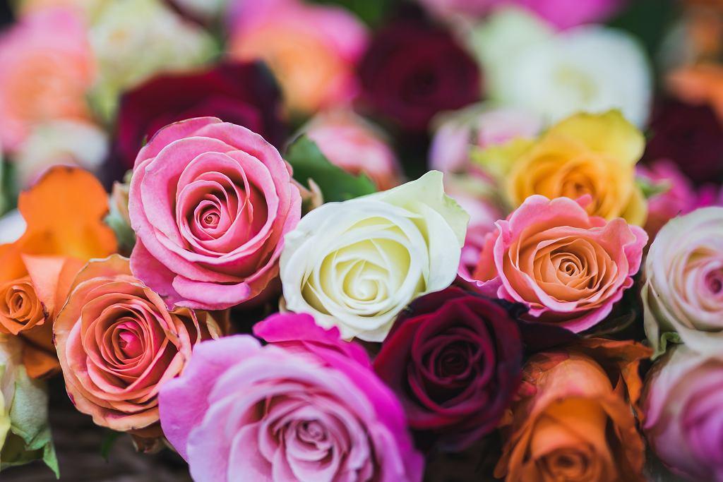 Dzień Matki 2021 - wierszyki, rymowanki i życzenia na Dzień Mamy