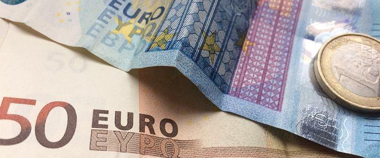 Średni kurs walut NBP - 16.08 [kurs dolara, funta, euro, franka]