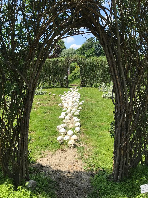 Arboretum - zdjęcie do audycji 'Bezgraniczny', odcinek poświęcony Przemyślowi i okolicom