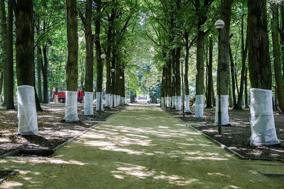Zdjęcie numer 2 w galerii - W parku Kopernika remonty alejek. Przespacerujemy się nimi pod koniec września