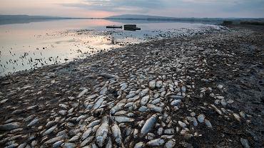 Jezioro Koroneia