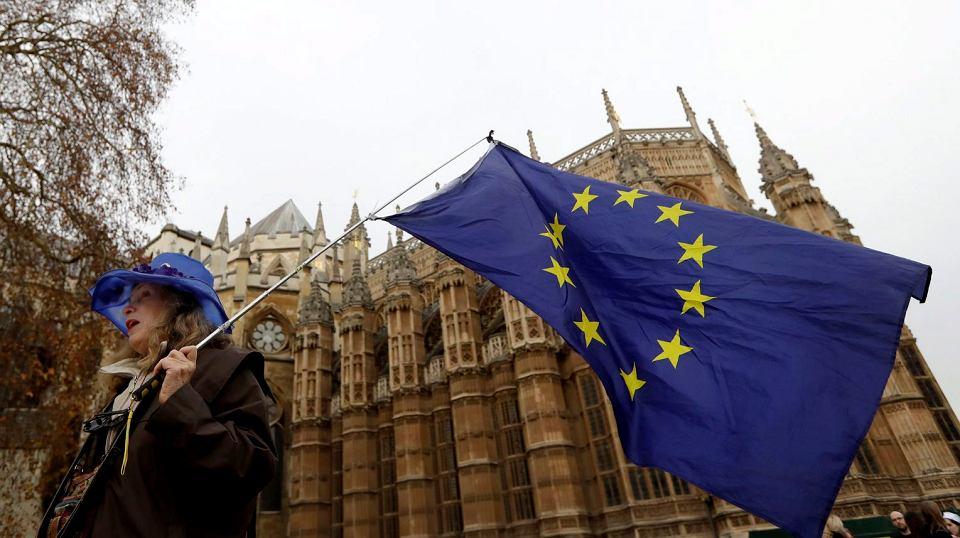 Manifestacja przeciwników brexitu przed brytyjskim parlamentem, 4 grudnia 2018 r.