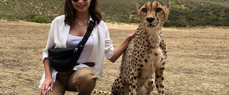 Wieniawa skrytykowana za zdjęcie z gepardem