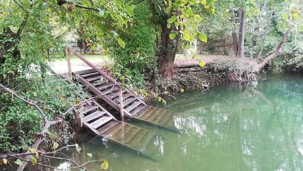 Rzeka Mreżnica - woda idealnie przejrzysta.