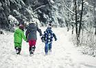 Ferie zimowe 2018 - jak zaplanować wypoczynek zimowy z dziećmi