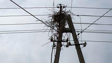 Podwyżki cen prądu uderzyły w samorządy