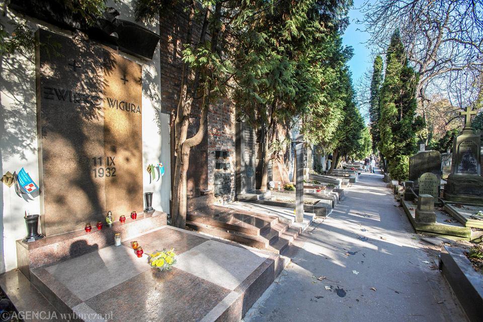 Cmentarz Stare Powązki. Aleja Zasłużonych
