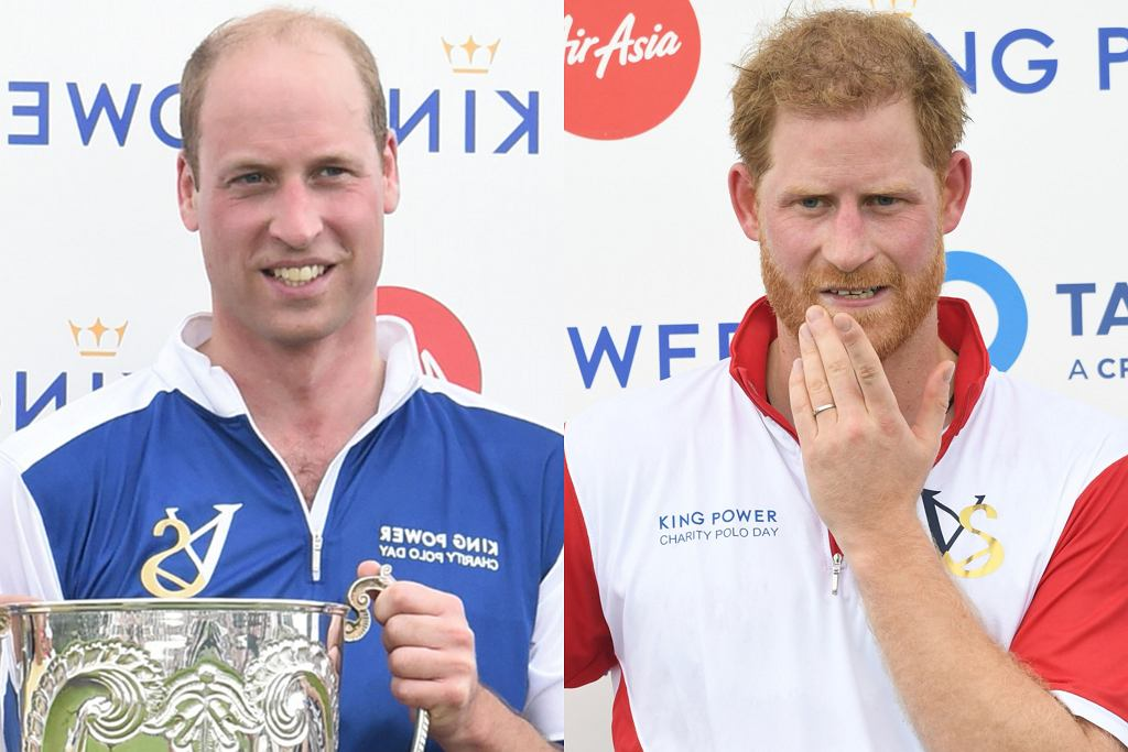 Książęta Harry i William