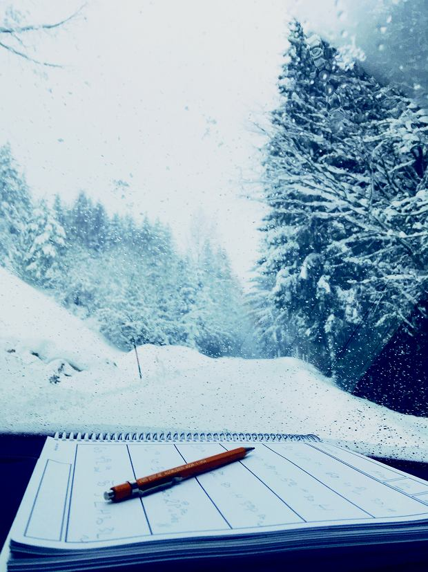 Widok z 'biura' załogi szpiegującej. Wcześniej śniegu nie było - notatki do poprawy.