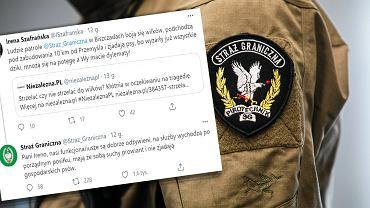 Straż Graniczna odpowiedziała na Twitterze ws. odstrzału wilków.