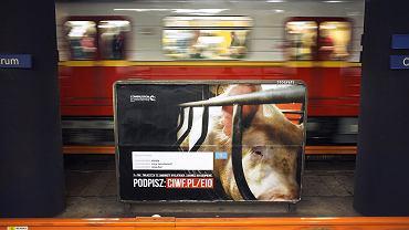 'Koniec Epoki Klatkowej' ma na celu wprowadzić całkowity zakaz klatek w hodowli zwierząt
