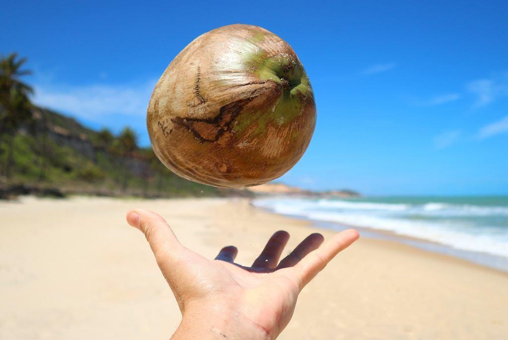 Woda kokosowa. Woda kokosowa a odchudzanie