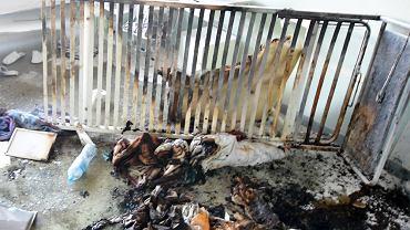 Koszmarna śmierć w szpitalu. 37-latek był przywiązany do płonącego łóżka