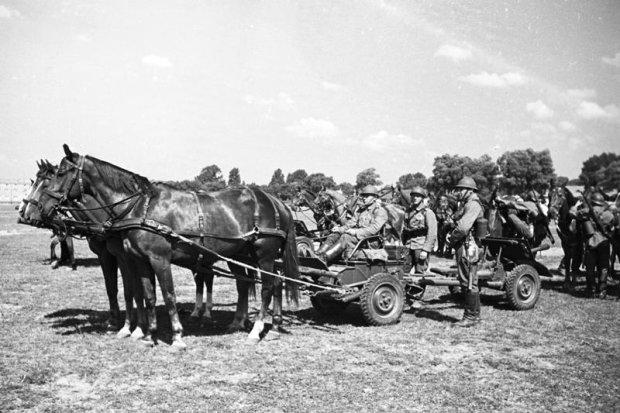 Zdjęcie numer 2 w galerii - Wyjątkowe zdjęcia. Manewry wojska polskiego latem 1939 r.