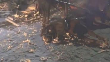 Koń padł w trakcie kuligu w Wiśle