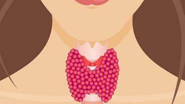 Właściwe odżywianie nie wystarczy, by gruczoł tarczycy pracował prawidłowo, ale prawidłowa dieta może ją wspierać
