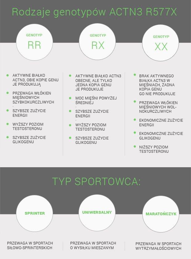 Tabela nr 1. Cechy sportowe związane z rodzajem posiadanych mięśni w zależności od genotypu ACTN3 R577X