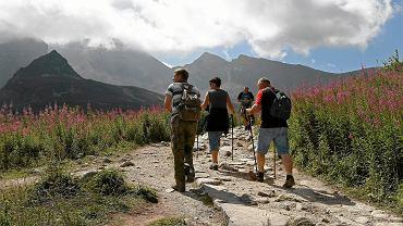 Turyści w Tatrach / Zdjęcie ilustracyjne