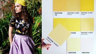 Modne kolory w kolekcji Risk made in Warsaw