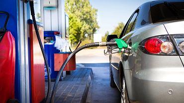 Ceny paliw stabilizują się. Nie ma jednak co liczyć na spadek