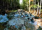 Polskie śmieci, czyli co się zmienia i o co jest zamieszanie