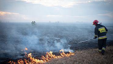 Pożar Biebrzańskiego Parku Narodowego (zdjęcie ilustracyjne)