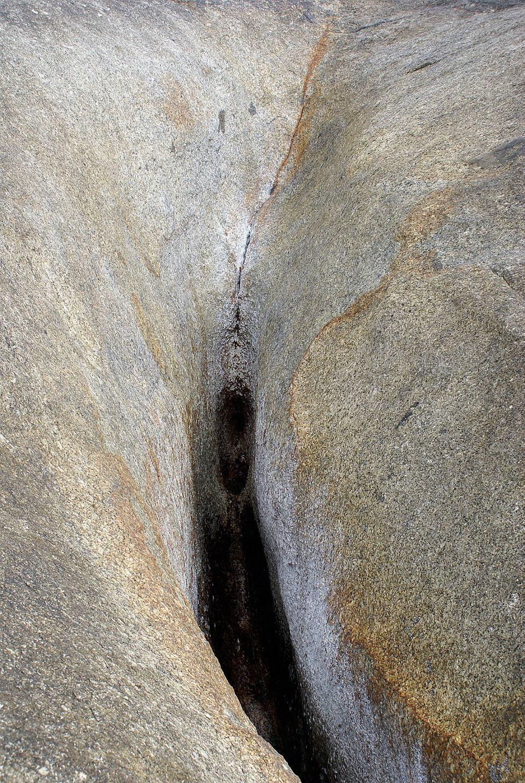 Zdjęcie numer 5 w galerii - Aplikacja do zarządzania waginą: pierwsze na świecie interaktywne genitalia