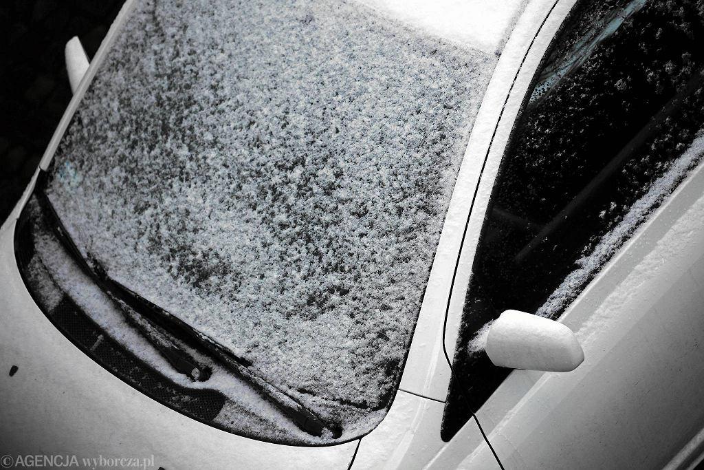 To jeszcze nie koniec zimy