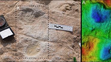 Odciski stóp Homo sapiens zastygłe w błocie na brzegu pradawnego jeziora na Półwyspie Arabskim, datowane na 120 tys. lat temu