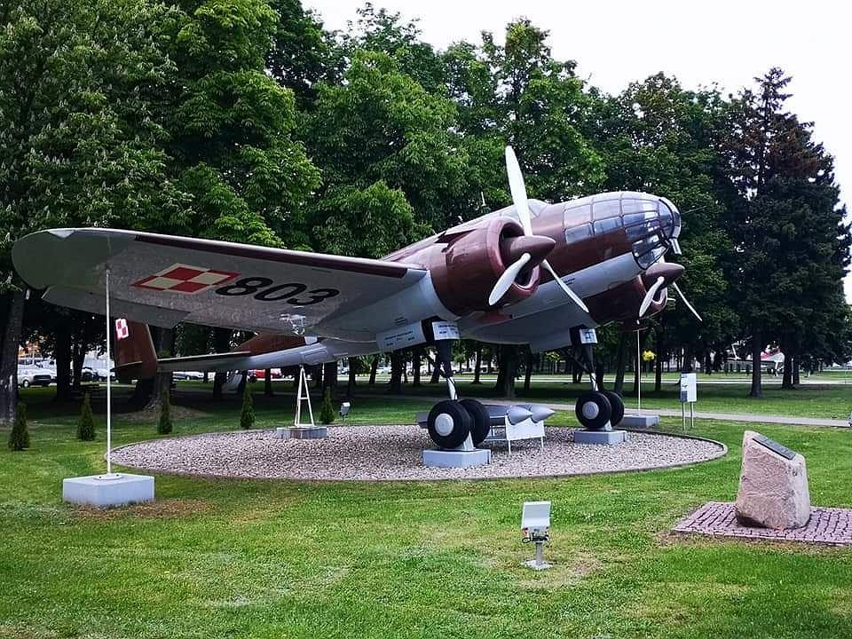 Samolot Łoś 803
