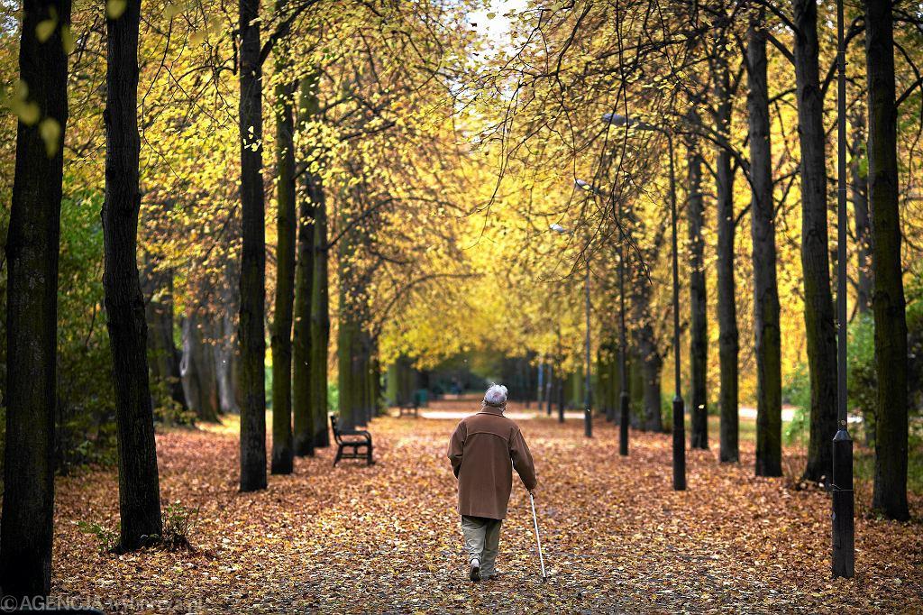 Na wypłatę emerytur i rent zabraknie nawet 355 mld zł w ciągu 5 lat