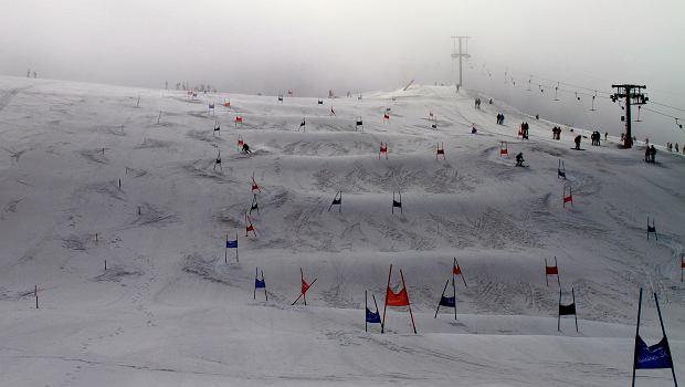 narciarstwo alpejskie, narty we francji