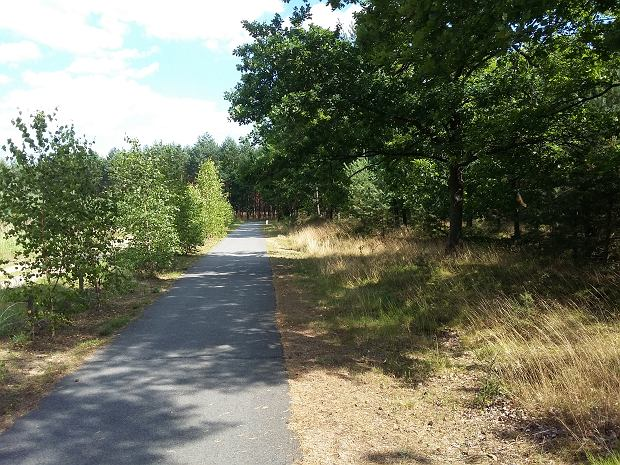 Milicz zachwyca trasami rowerowymi