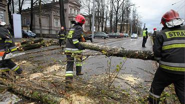 Strażacy usuwają skutki nawałnic, które przeszły nad Polską (zdjęcie ilustracyjne)