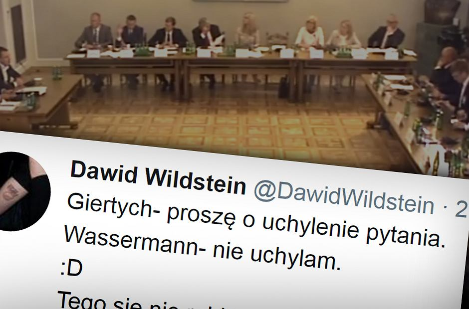Wpis Dawida Wildsteina