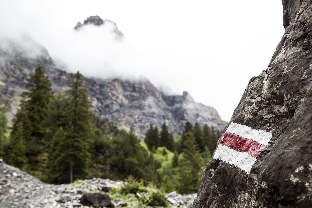 Co oznaczają kolory szlaków górskich? Między innymi długość trasy. Zdjęcie ilustracyjne