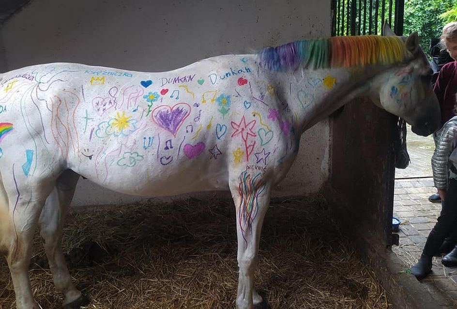 Pomalowany przez dzieci koń