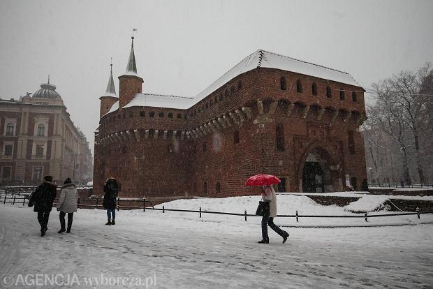 Zdjęcie numer 18 w galerii - Zima w Krakowie - śnieg przykrył ulice, domy, parki [GALERIA]